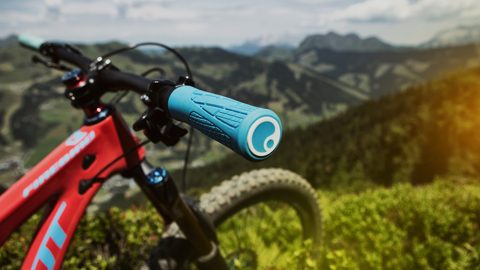 Ergon GA2 Fat grip
